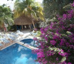 Cozumel long term vacation rental Casa Tomas