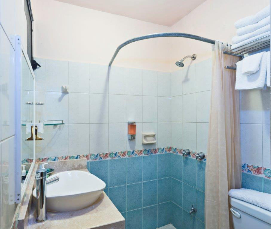 Studio Orchid bathroom with shower