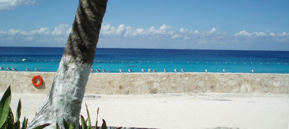 Cozumel sandy beach