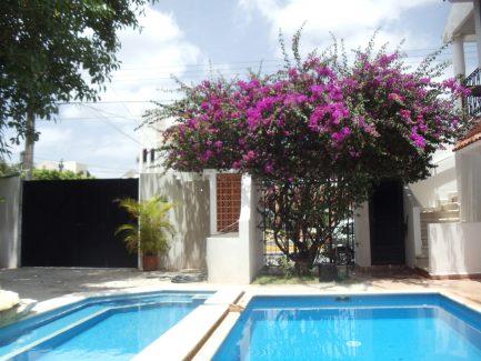 Cozumel rental villa garden