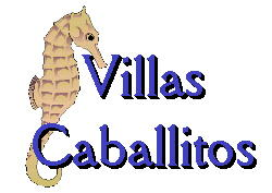 Villa Caballitos logo, Cozumel vacation rental villa