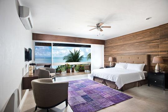 Cozumel beachfront villa - Villa de Sol vacation rental