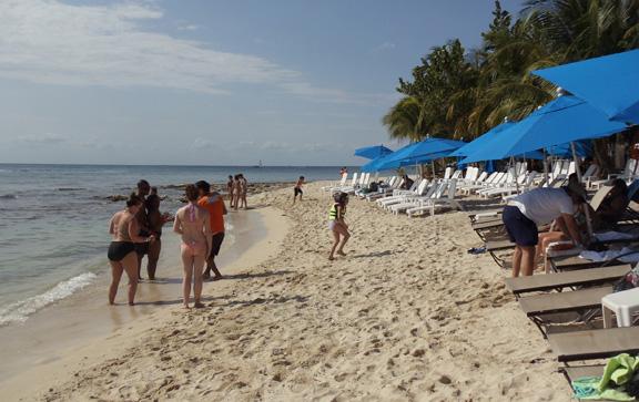Cozumel beach at Ocean  beach club