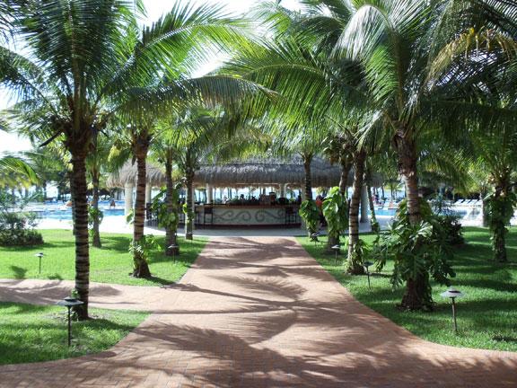 Cozumel Paradise Beach Club
