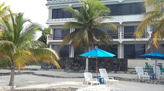 sandy area for sunning